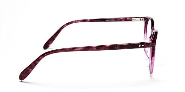 Fusion Glasses Dual Tone Frames -3
