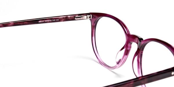 Fusion Glasses Dual Tone Frames -4