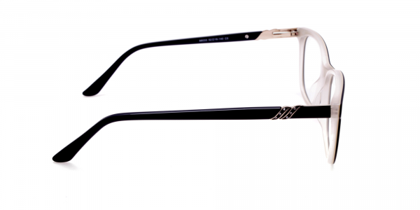 Black and White Cat-Eye Glasses -3