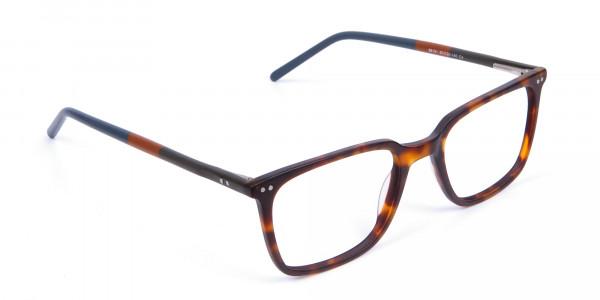 Havana & Tortoiseshell Charmer Glasses - 1