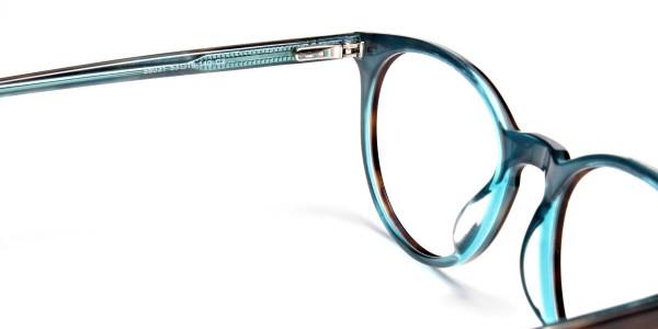 Blue, Green & Brown Glasses -4