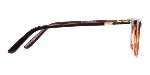 Brown, Tortoise & Nude Pink Rectangle Eyeglasses-4