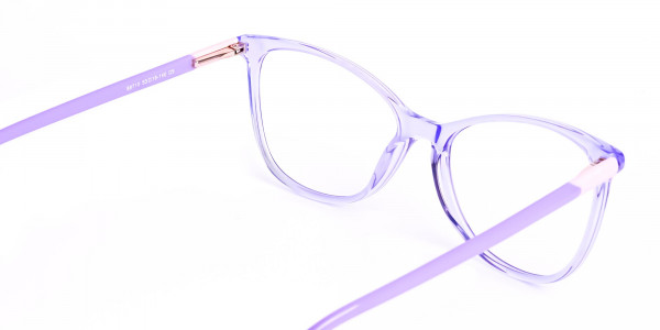 Crystal-Pastel-Purple-Cat eye-Glasses-Frames-5