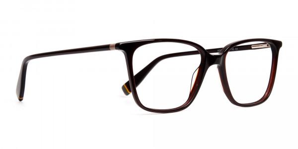 brown-glasses-in-rectangular-cat-eye-frames-2