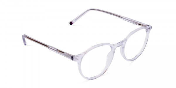 Crystal-Clear-Rimmed-Round-Glasses-2