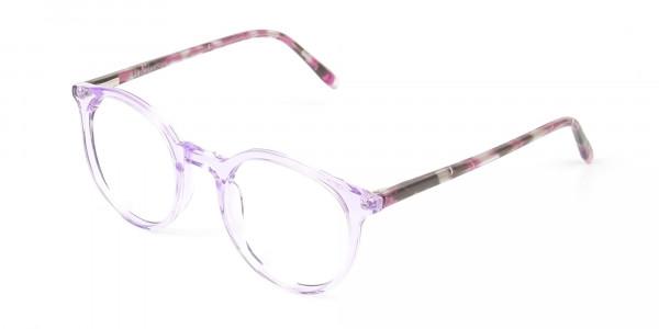 Crystal Pastel Purple & Rose Red Tortoise Glasses - 3