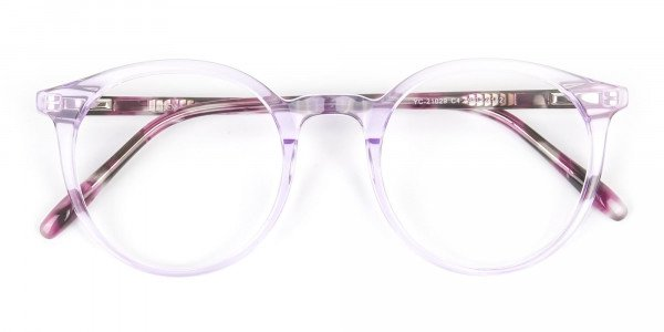 Crystal Pastel Purple & Rose Red Tortoise Glasses - 6