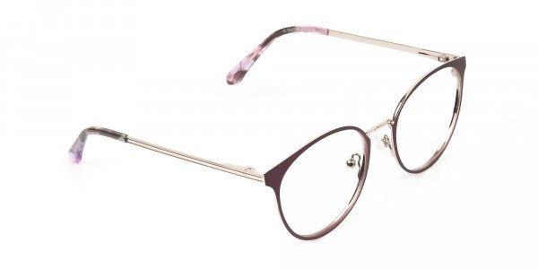 Silver Burgundy Red Spectacle Frames in Round - 2