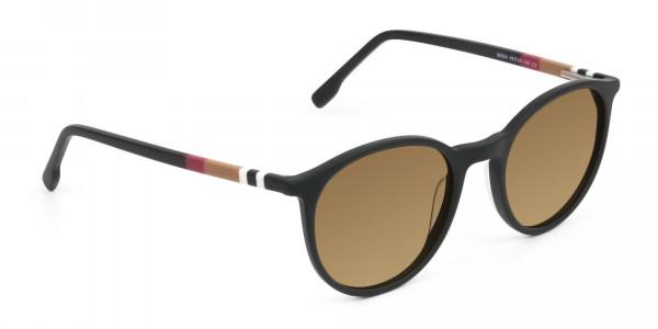 dark-brown-matte-black-sunglasses - 2