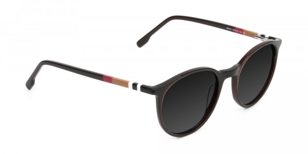 Dark-grey-tinted-dark-brown-sunglasses - 2
