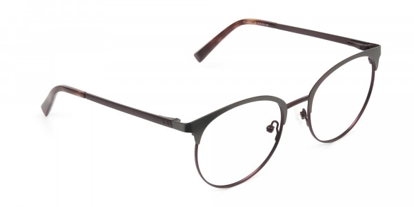 Brown & Gunmetal Clubmaster Glasses in Round - 2