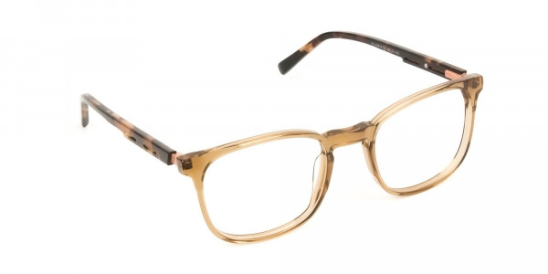 Translucent Brown Havana & Tortoise Large Square Tortoise Shell Glasses - 2