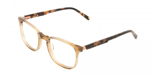 Translucent Brown Havana & Tortoise Large Square Tortoise Shell Glasses - 3