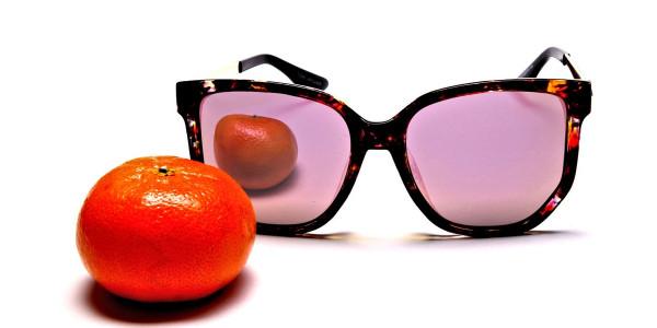Classy Tortoiseshell Sunglasses -5