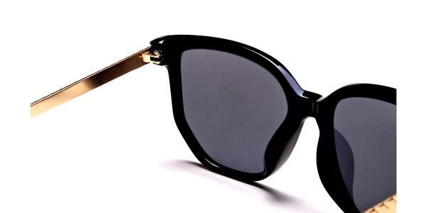 No Ordinary Pair of Sunglasses -4
