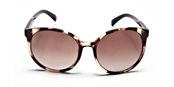 Oversized Rectangular Sunglasses in Tortoiseshell