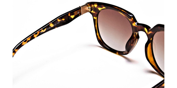 Tortoiseshell Leopard Sunglasses --4