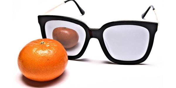 Black & Gold Trophy Sunglasses -5