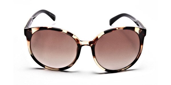 Oversized Rectangular Sunglasses in Tortoiseshell