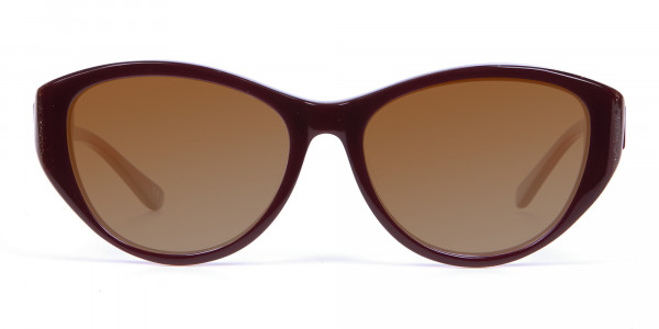 Women's Sunglasses Burgundy & Brown-1