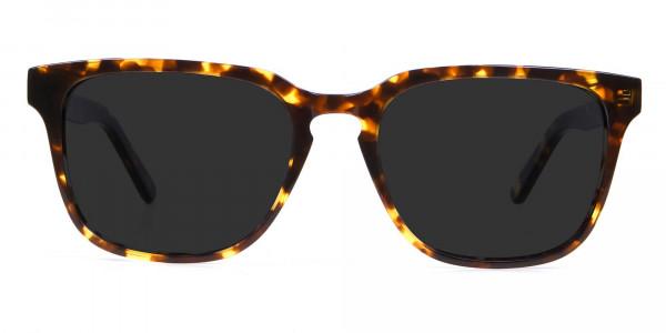 Oversized Square Sunglasses in Tortoiseshell -1