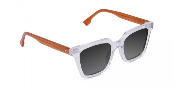 Clear-Wayfarer-Sunglasses-with-Grey-Tint-2