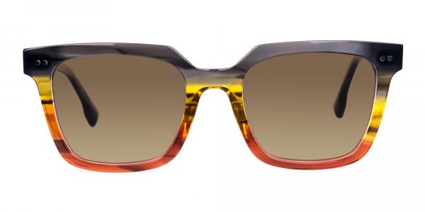 Wayfarer-Brown-Sunglasses-with-Brown-Tint-1