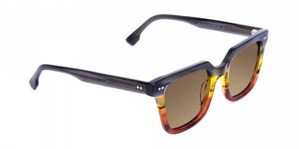Wayfarer-Brown-Sunglasses-with-Brown-Tint-2