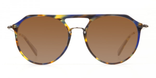 Dark Brown Aviator Sunglasses-1