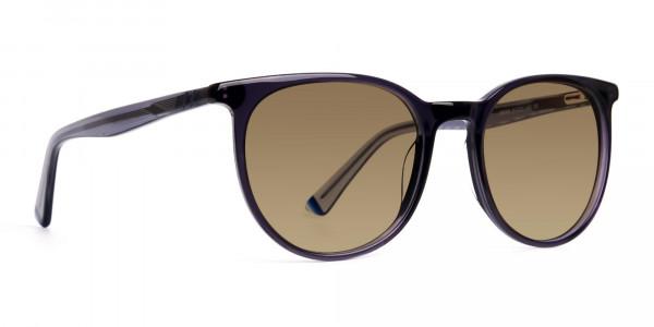 space-grey-round-designer-brown-tinted-sunglasses-frames-2