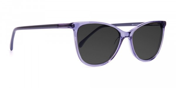 transparent-space-grey-cat-eye-brown-tinted-sunglasses-frames-2