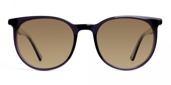 space-grey-round-designer-brown-tinted-sunglasses-frames-1