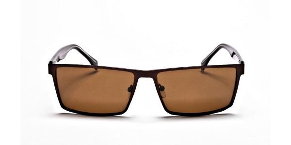 Classic Sunglasses in Wayfarer