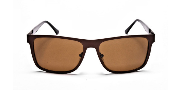 Brown Wayfarer Sunglasses for Men and Women