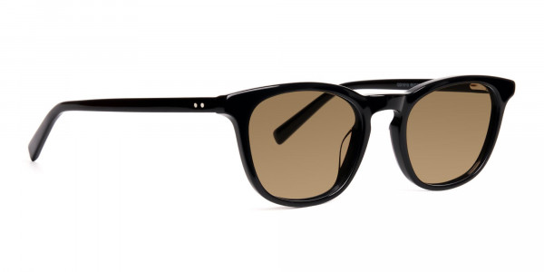 black-thick-wayfarer-dark-brown-tinted-sunglasses-frames-2