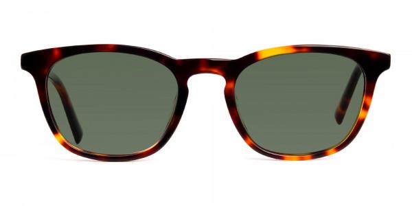 tortoiseshell-wayfarer-full-rim-dark-green-tinted-sunglasses-frames-1