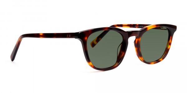 tortoiseshell-wayfarer-full-rim-dark-green-tinted-sunglasses-frames-2