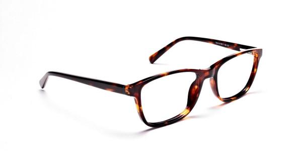 Wayfarer glasses in Tortoiseshell for Men & Women -2