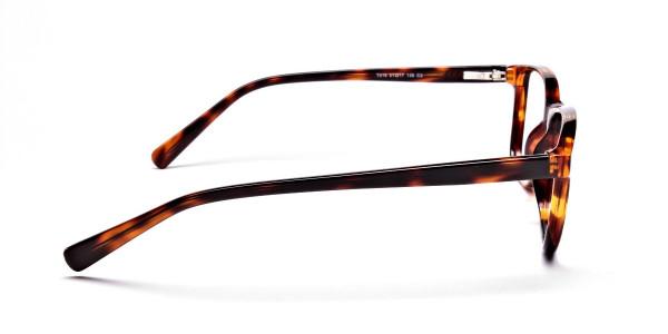 Wayfarer glasses in Tortoiseshell for Men & Women -4