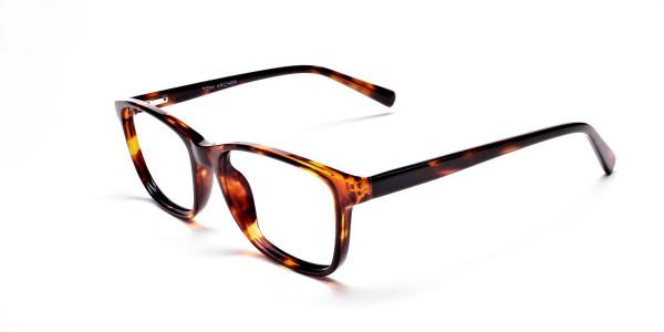 Wayfarer glasses in Tortoiseshell for Men & Women -3