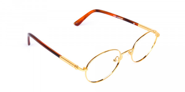 Gold-and-Brown-Small-Round-Tortoiseshell-Glasses-2