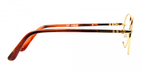 Gold-and-Brown-Small-Round-Tortoiseshell-Glasses-4
