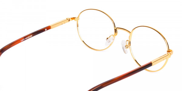 Gold-and-Brown-Small-Round-Tortoiseshell-Glasses-5