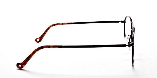 Brown Glasses in Round and Aviator , Eyeglasses -4