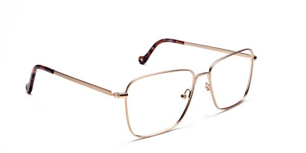Retro Glasses Frame in Gold Metal with Tortoise Temple Tips, Eyeglasses -2