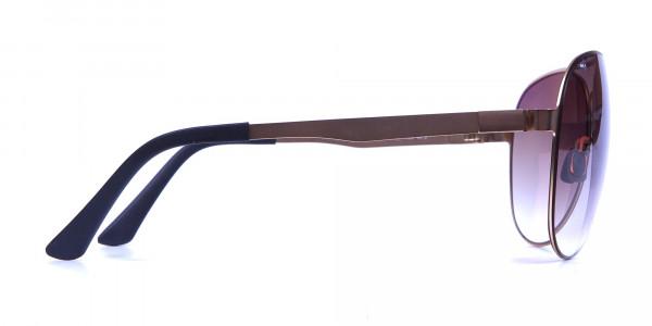 Brown & Gold Avatar Sunglasses -3