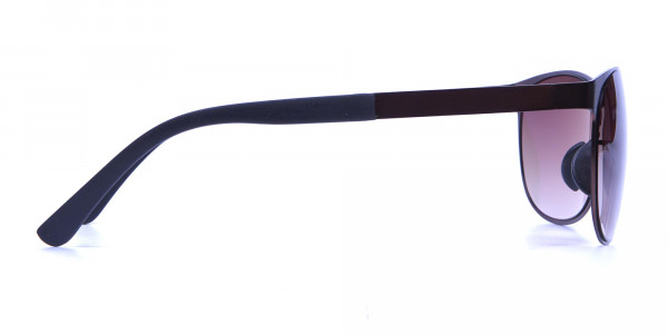 Brown and bronze sunglasses in Round Metal Frame-4