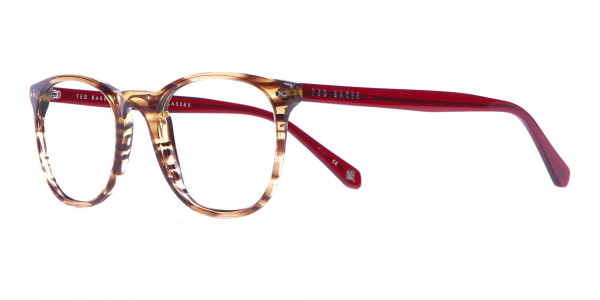 TB8120 Denny Round Glasses Brown Horn & Red-3