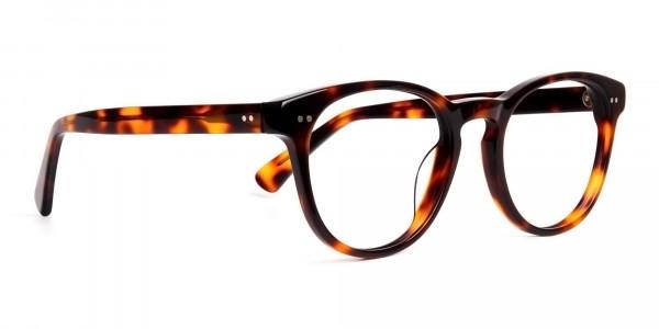 havana-tortoise-full-rim-round-glasses-frames-2