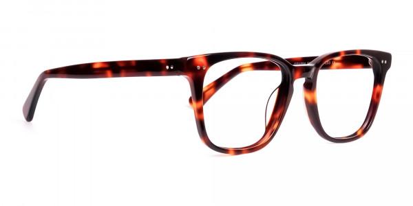 havana-and-tortoise-Shell-Wayfarer-glasses-frames-2